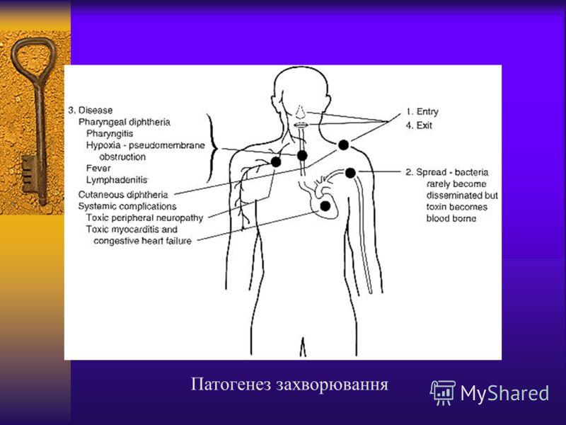 Патогенез захворювання