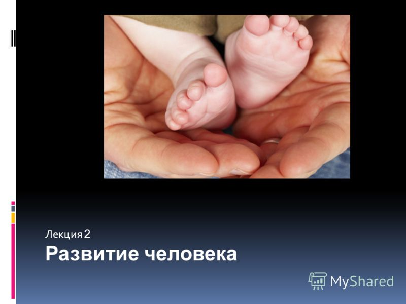 Лекция 2 Развитие человека