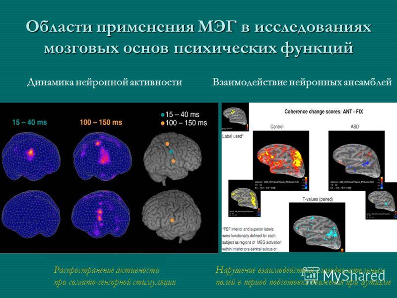 Области применения МЭГ в исследованиях мозговых основ психических функций Динамика нейронной активностиВзаимодействие нейронных ансамблей Распространение активности при сомато-сенсорной стимуляции Нарушение взаимодействия глазодвигательных полей в пе