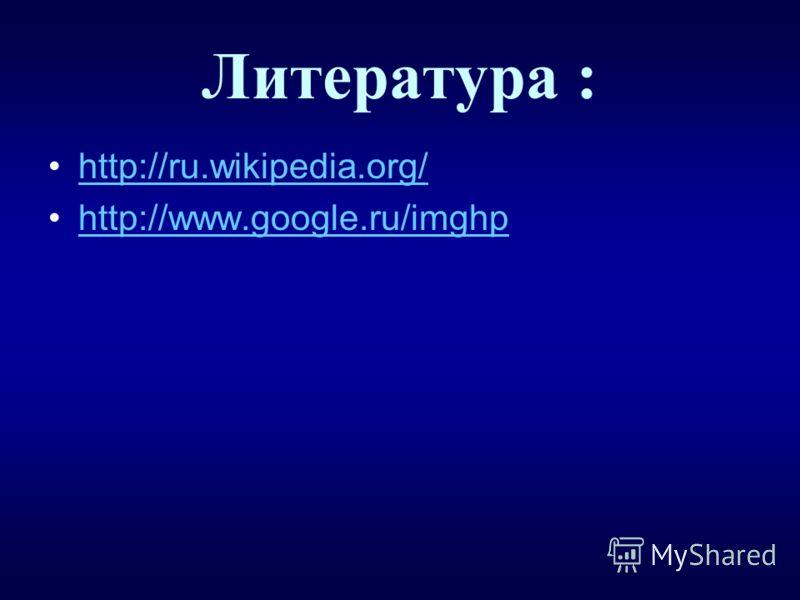 Литература : http://ru.wikipedia.org/ http://www.google.ru/imghp