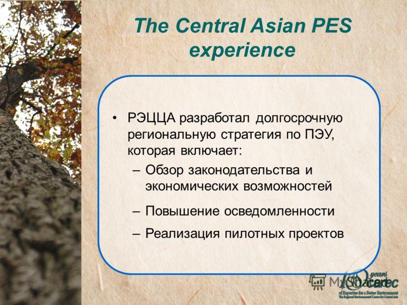 The Central Asian PES experience РЭЦЦА разработал долгосрочную региональную стратегия по ПЭУ, которая включает: –Обзор законодательства и экономических возможностей –Повышение осведомленности –Реализация пилотных проектов