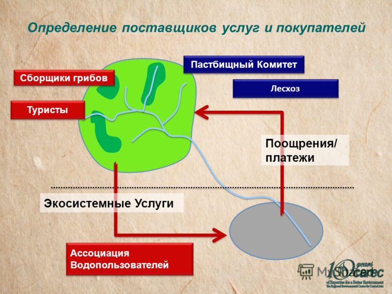 Определение поставщиков услуг и покупателей Экосистемные Услуги Поощрения/ платежи Ассоциация Водопользователей Лесхоз Пастбищный Комитет Туристы Сборщики грибов