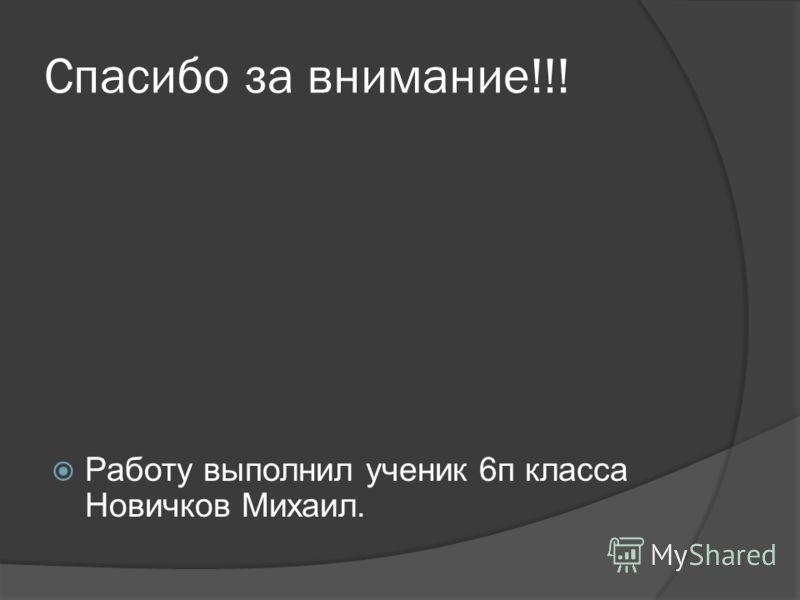 Спасибо за внимание!!! Работу выполнил ученик 6п класса Новичков Михаил.