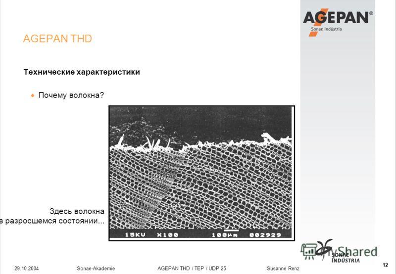29.10.2004Sonae-Akademie AGEPAN THD / TEP / UDP 25 Susanne Renz 12 AGEPAN THD Технические характеристики Почему волокна? Здесь волокна в разросшемся состоянии...
