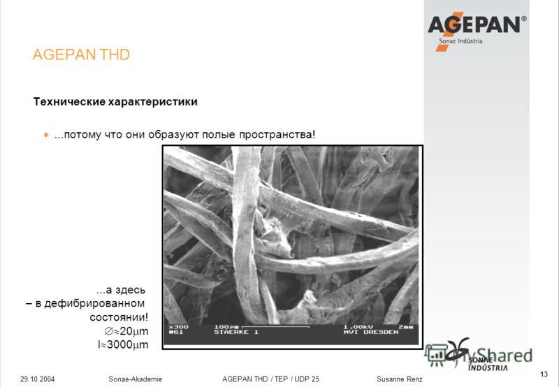 29.10.2004Sonae-Akademie AGEPAN THD / TEP / UDP 25 Susanne Renz 13 AGEPAN THD Технические характеристики...потому что они образуют полые пространства!...а здесь – в дефибрированном состоянии! 20 m l 3000 m