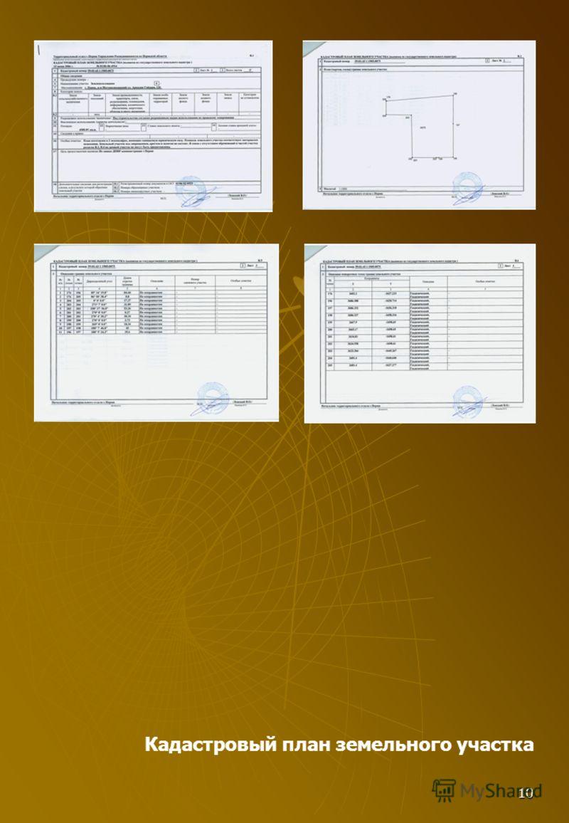 10 Кадастровый план земельного участка