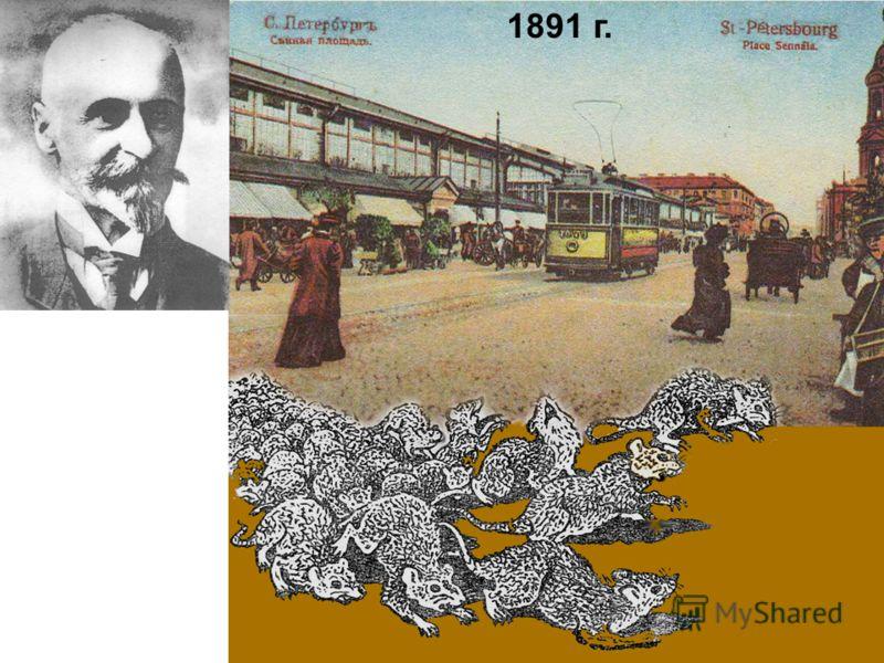 1891 г. МЕРЕЖСКОВСКИЙ СЕРГЕЙ СЕРГЕЕВИЧ