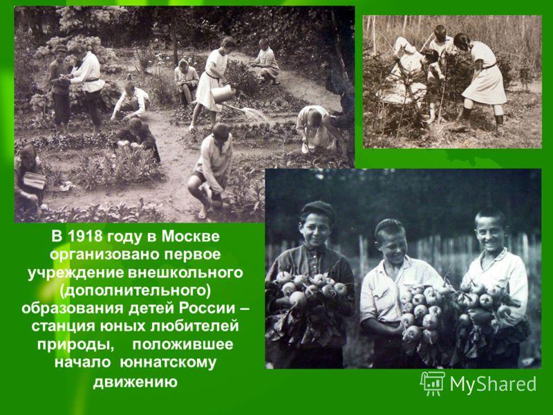 В 1918 году в Москве организовано первое учреждение внешкольного (дополнительного) образования детей России – станция юных любителей природы, положившее начало юннатскому движению