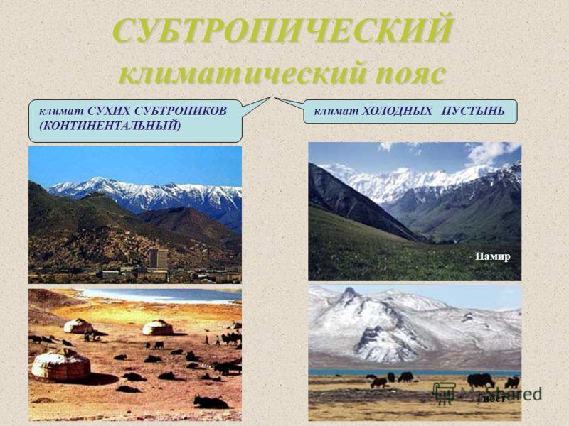 СУБТРОПИЧЕСКИЙ климатический пояс Памир Тибет климат СУХИХ СУБТРОПИКОВ (КОНТИНЕНТАЛЬНЫЙ) климат ХОЛОДНЫХ ПУСТЫНЬ