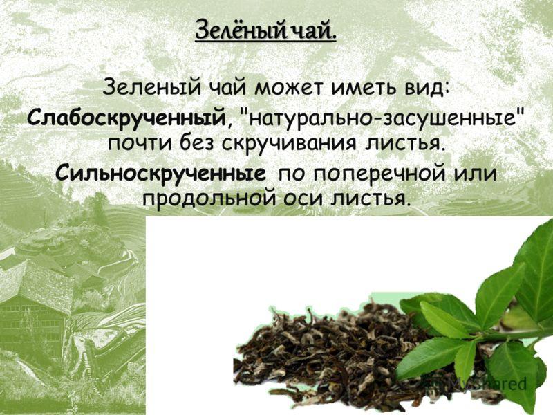 Зелёный чай Зелёный чай. Зеленый чай может иметь вид: Слабоскрученный, натурально-засушенные почти без скручивания листья. Сильноскрученные по поперечной или продольной оси листья.