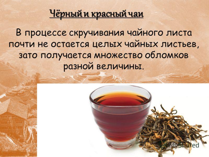 Чёрный и красный чаи В процессе скручивания чайного листа почти не остается целых чайных листьев, зато получается множество обломков разной величины.