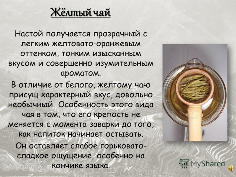 Настой получается прозрачный с легким желтовато-оранжевым оттенком, тонким изысканным вкусом и совершенно изумительным ароматом. В отличие от белого, желтому чаю присущ характерный вкус, довольно необычный. Особенность этого вида чая в том, что его к