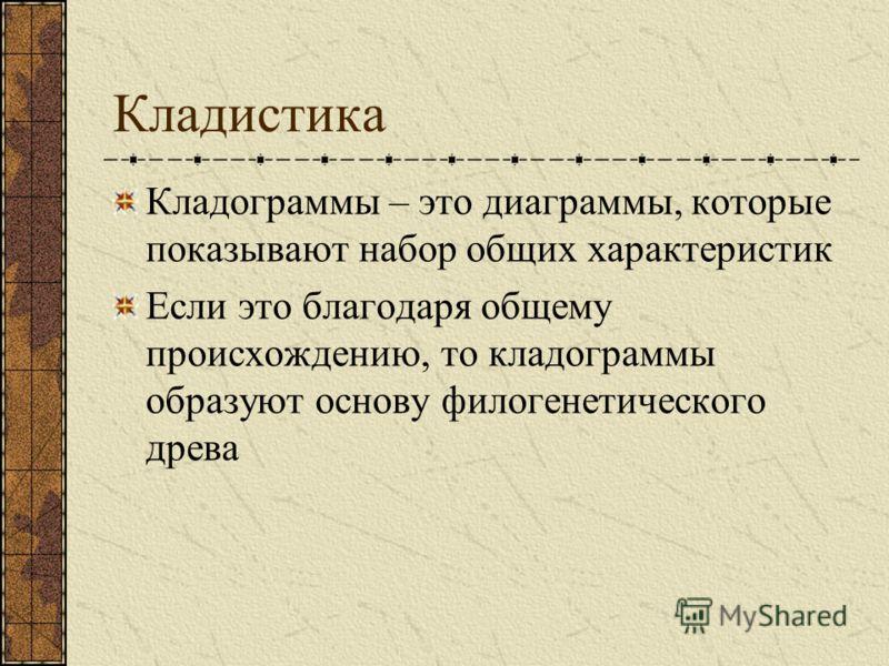 Кладистика Кладограммы – это диаграммы, которые показывают набор общих характеристик Если это благодаря общему происхождению, то кладограммы образуют основу филогенетического древа