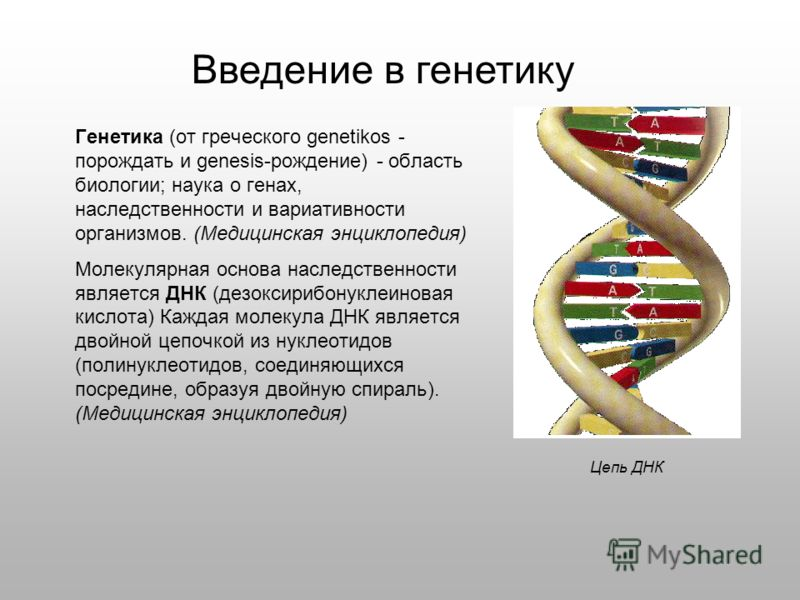 Генетика (от греческого genetikos - порождать и genesis-рождение) - область биологии; наука о генах, наследственности и вариативности организмов. (Медицинская энциклопедия) Молекулярная основа наследственности является ДНК (дезоксирибонуклеиновая кис