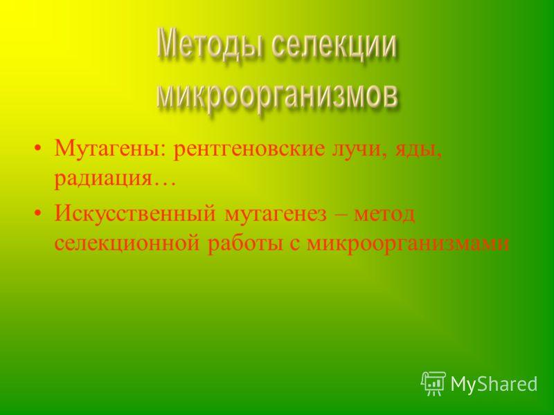 Мутагены: рентгеновские лучи, яды, радиация… Искусственный мутагенез – метод селекционной работы с микроорганизмами