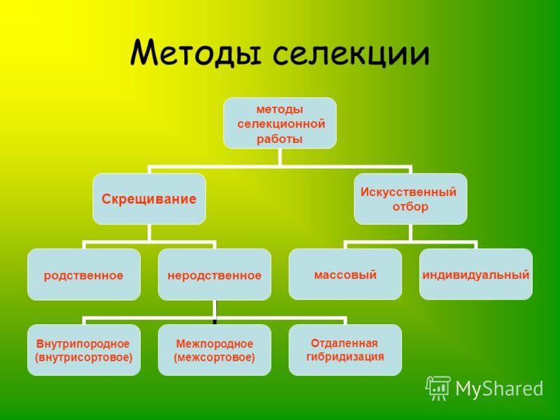 Методы селекции методы