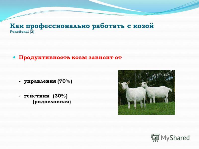 Как профессионально работать с козой Functional (2) Продуктивность козы зависит от - управления (70%) - генетики (30%) (родословная)