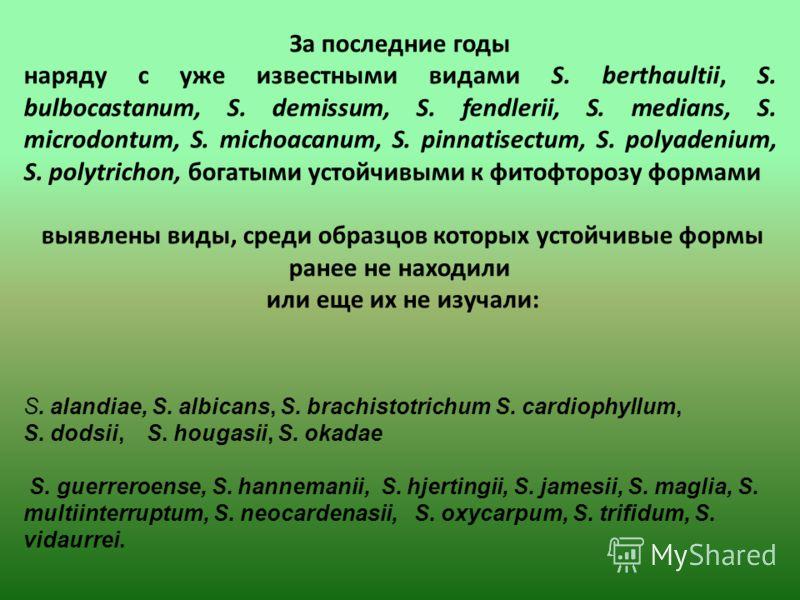 S. alandiae, S. albicans, S. brachistotrichum S. cardiophyllum, S. dodsii, S. hougasii, S. okadae S. guerreroense, S. hannemanii, S. hjertingii, S. jamesii, S. maglia, S. multiinterruptum, S. neocardenasii, S. oxycarpum, S. trifidum, S. vidaurrei. За