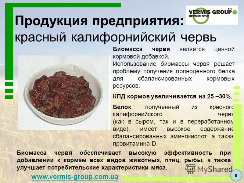 Продукция предприятия: красный калифорнийский червь Биомасса червя является ценной кормовой добавкой. Использование биомассы червя решает проблему получения полноценного белка для сбалансированных кормовых ресурсов. КПД кормов увеличивается на 25 –30