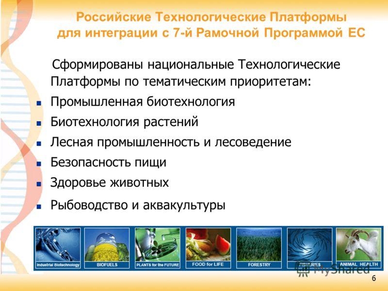 6 Сформированы национальные Технологические Платформы по тематическим приоритетам: Промышленная биотехнология Биотехнология растений Лесная промышленность и лесоведение Безопасность пищи Здоровье животных Рыбоводство и аквакультуры Российские Техноло