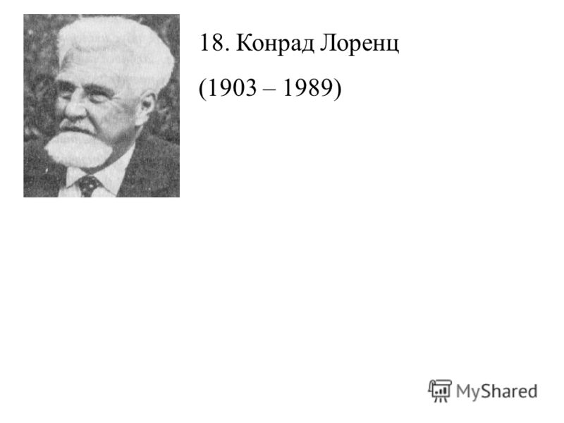 18. Конрад Лоренц (1903 – 1989)