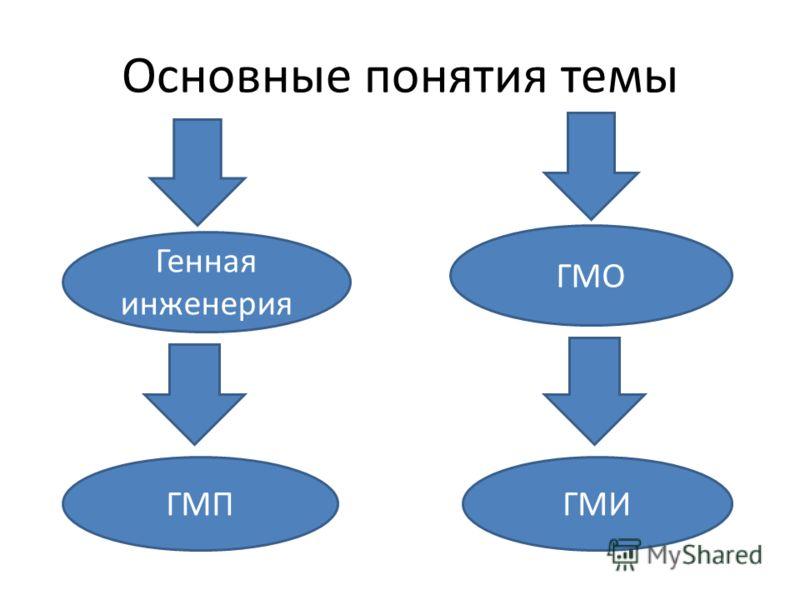 Основные понятия темы Генная инженерия ГМО ГМПГМИ