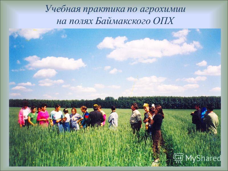Учебная практика по агрохимии на полях Баймакского ОПХ