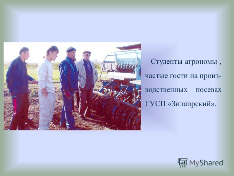 Студенты агрономы, частые гости на произ- водственных посевах ГУСП «Зилаирский».