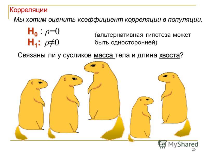 20 Корреляции H 0 H 0 : ρ=0 H 1 : H 1 : ρ0 масса хвоста Связаны ли у сусликов масса тела и длина хвоста? (альтернативная гипотеза может быть односторонней) Мы хотим оценить коэффициент корреляции в популяции.