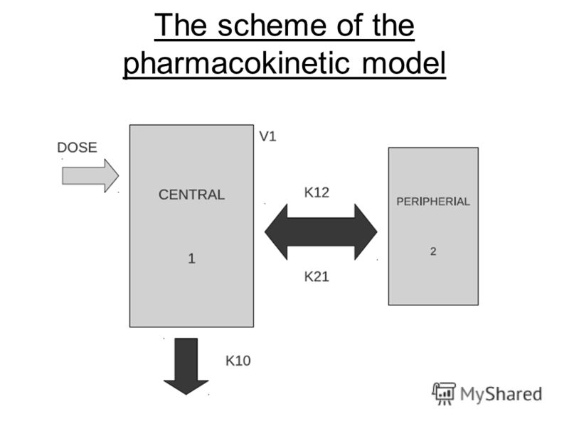 The scheme of the pharmacokinetic model