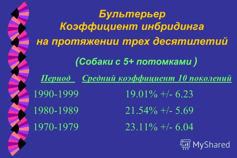 Бультерьер Коэффициент инбридинга на протяжении трех десятилетий ( Собаки с 5+ потомками ) Период Средний коэффициент 10 поколений 1990-1999 19.01% +/- 6.23 1980-1989 21.54% +/- 5.69 1970-1979 23.11% +/- 6.04
