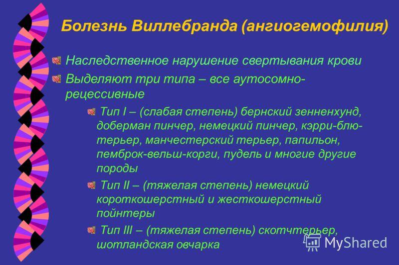 Болезнь Виллебранда (ангиогемофилия) Наследственное нарушение свертывания крови Выделяют три типа – все аутосомно- рецессивные Тип I – (слабая степень) бернский зенненхунд, доберман пинчер, немецкий пинчер, кэрри-блю- терьер, манчестерский терьер, па