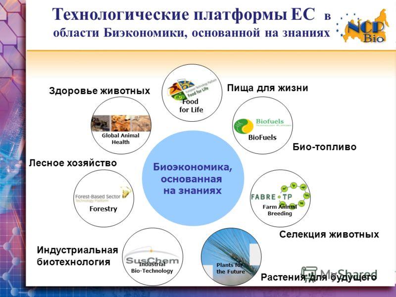 Технологические платформы ЕС в области Биэкономики, основанной на знаниях Биоэкономика, основанная на знаниях Forestry Industrial Bio-Technology Plants for the Future Farm Animal Breeding Global Animal Health Food for Life BioFuels Здоровье животных