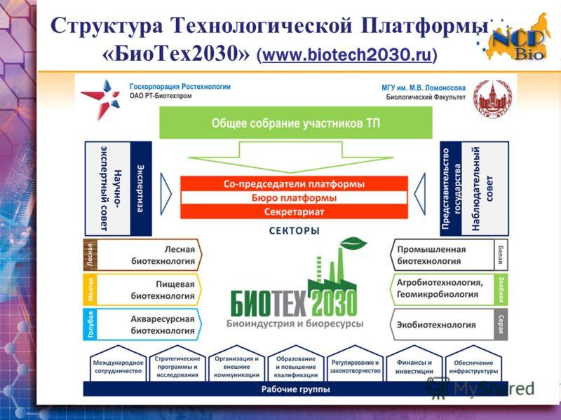 Структура Технологической Платформы «БиоТех2030» (www.biotech2030.ru)
