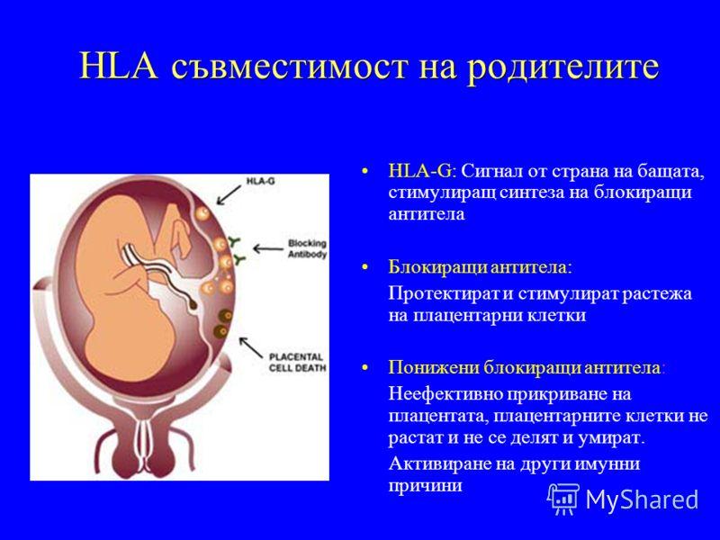 HLA съвместимост на родителите HLA-G: Сигнал от страна на бащата, стимулиращ синтеза на блокиращи антитела Блокиращи антитела: Протектират и стимулират растежа на плацентарни клетки Понижени блокиращи антитела: Неефективно прикриване на плацентата, п