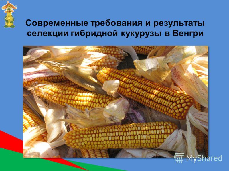 Современные требования и результаты селекции гибридной кукурузы в Венгри