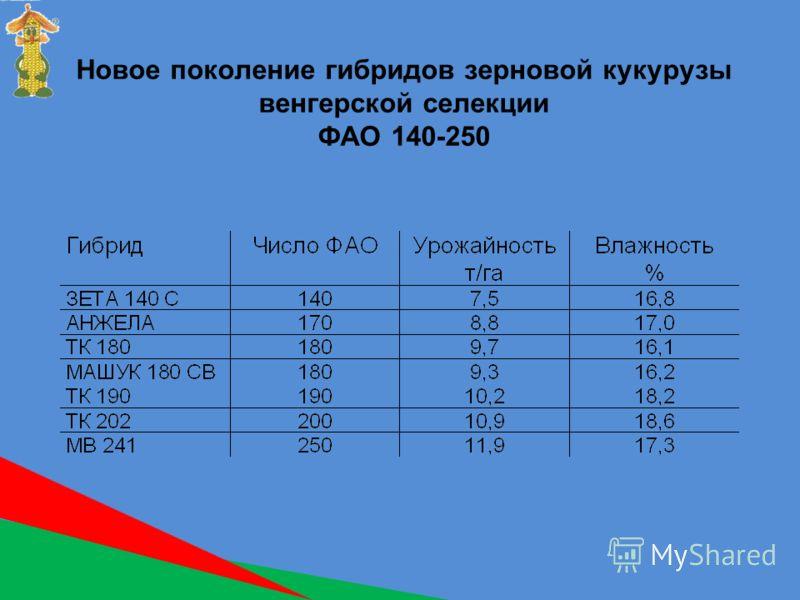 Новое поколение гибридов зерновой кукурузы венгерской селекции ФАО 140-250