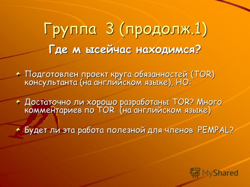 Группа 3 (продолж.1) Где м ысейчас находимся? Подготовлен проект круга обязанностей (TOR) консультанта (на английском языке), НО: Достаточно ли хорошо разработаны TOR? Много комментариев по TOR (на английском языке) Будет ли эта работа полезной для ч