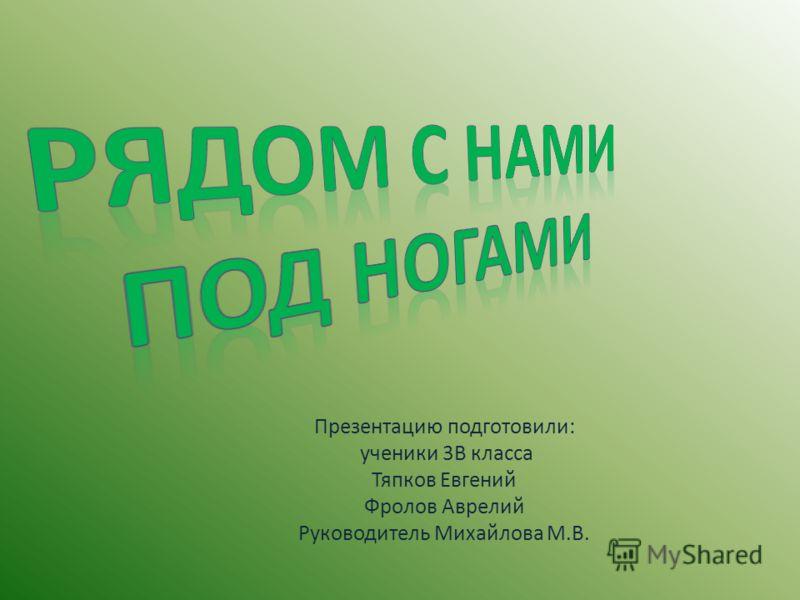 Презентацию подготовили: ученики 3В класса Тяпков Евгений Фролов Аврелий Руководитель Михайлова М.В.