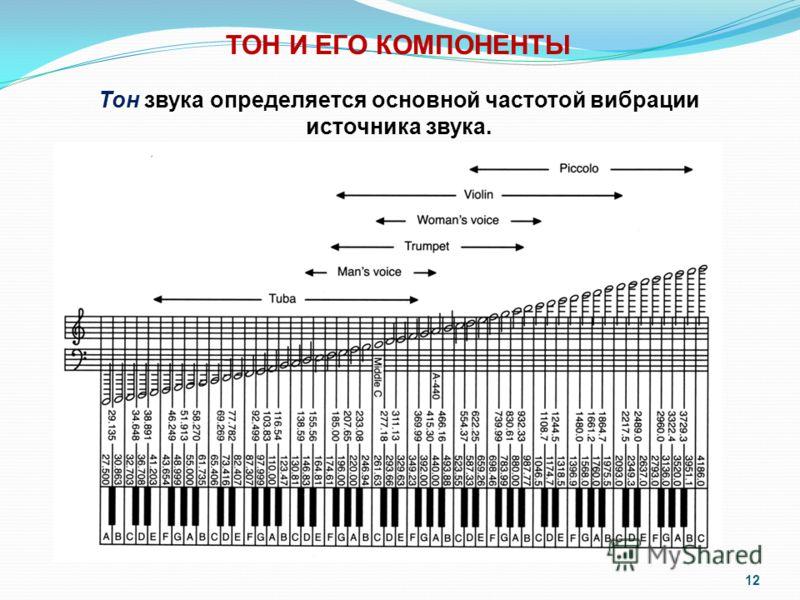 12 Тон звука определяется основной частотой вибрации источника звука. ТОН И ЕГО КОМПОНЕНТЫ