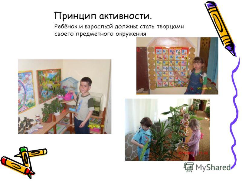 Принцип активности. Ребёнок и взрослый должны стать творцами своего предметного окружения