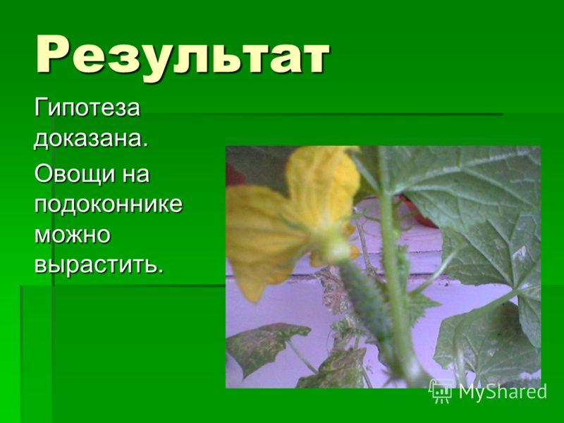 Результат Гипотеза доказана. Овощи на подоконнике можно вырастить.