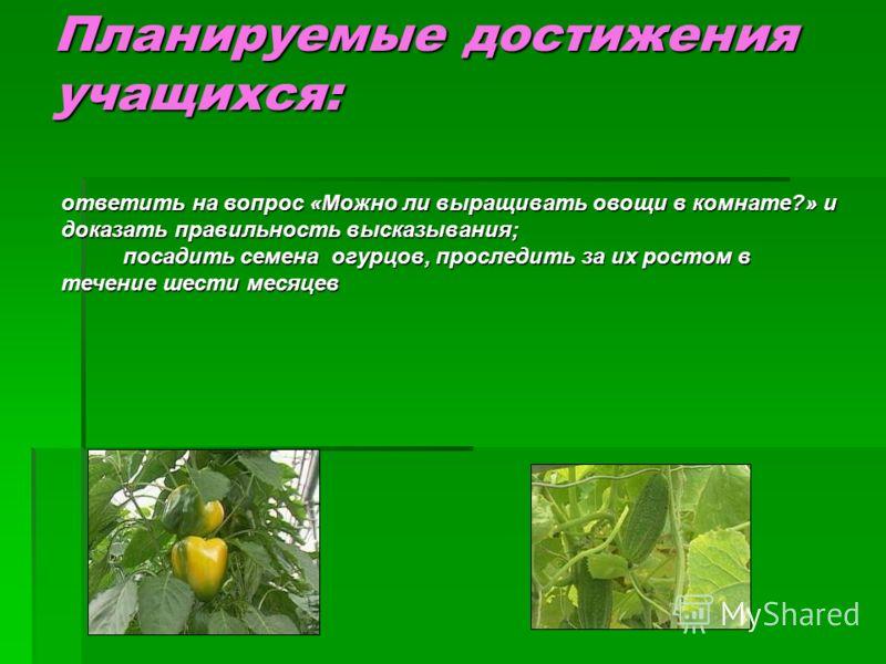 Планируемые достижения учащихся: ответить на вопрос «Можно ли выращивать овощи в комнате?» и доказать правильность высказывания; посадить семена огурцов, проследить за их ростом в течение шести месяцев посадить семена огурцов, проследить за их ростом