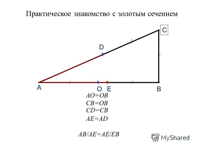 Практическое знакомство с золотым сечением А В С D EО АО=ОВ СВ=ОВ СD=CB АЕ=AD АВ/АE=AЕ/EB