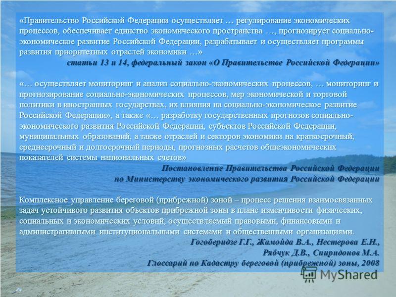 «Правительство Российской Федерации осуществляет … регулирование экономических процессов, обеспечивает единство экономического пространства …, прогнозирует социально- экономическое развитие Российской Федерации, разрабатывает и осуществляет программы
