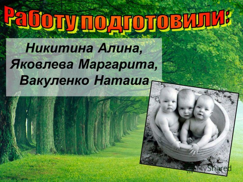 Никитина Алина, Яковлева Маргарита, Вакуленко Наташа