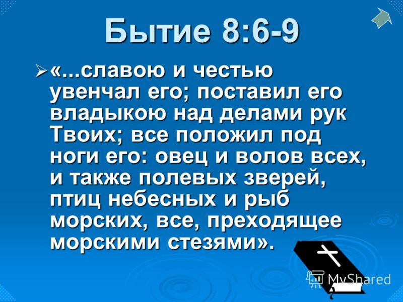 «...славою и честью увенчал его; поставил его владыкою над делами рук Твоих; все положил под ноги его: овец и волов всех, и также полевых зверей, птиц небесных и рыб морских, все, преходящее морскими стезями». «...славою и честью увенчал его; постави