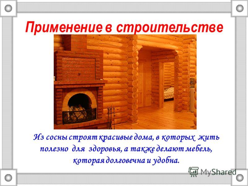 Применение в строительстве Из сосны строят красивые дома, в которых жить полезно для здоровья, а также делают мебель, которая долговечна и удобна.