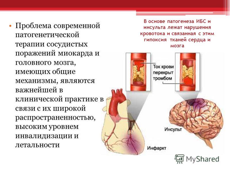В основе патогенеза ИБС и инсульта лежат нарушения кровотока и связанная с этим гипоксия тканей сердца и мозга Проблема современной патогенетической терапии сосудистых поражений миокарда и головного мозга, имеющих общие механизмы, являются важнейшей