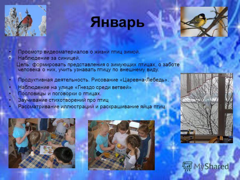 Январь Просмотр видеоматериалов о жизни птиц зимой. Наблюдение за синицей. Цель: формировать представления о зимующих птицах, о заботе человека о них, учить узнавать птицу по внешнему виду. Продуктивная деятельность. Рисование «Царевна-Лебедь».. Набл
